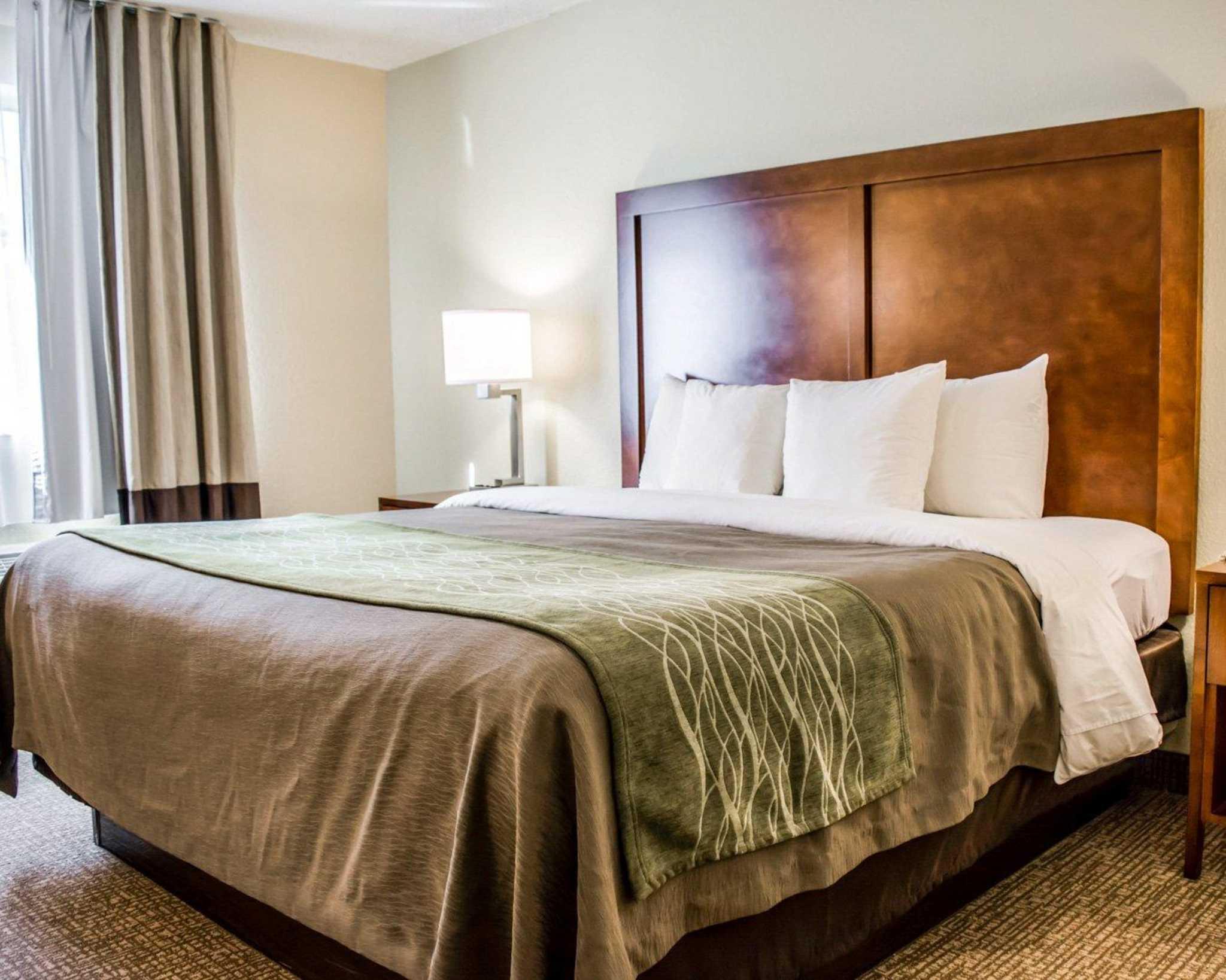 Comfort Inn Fort Myers Northeast image 6