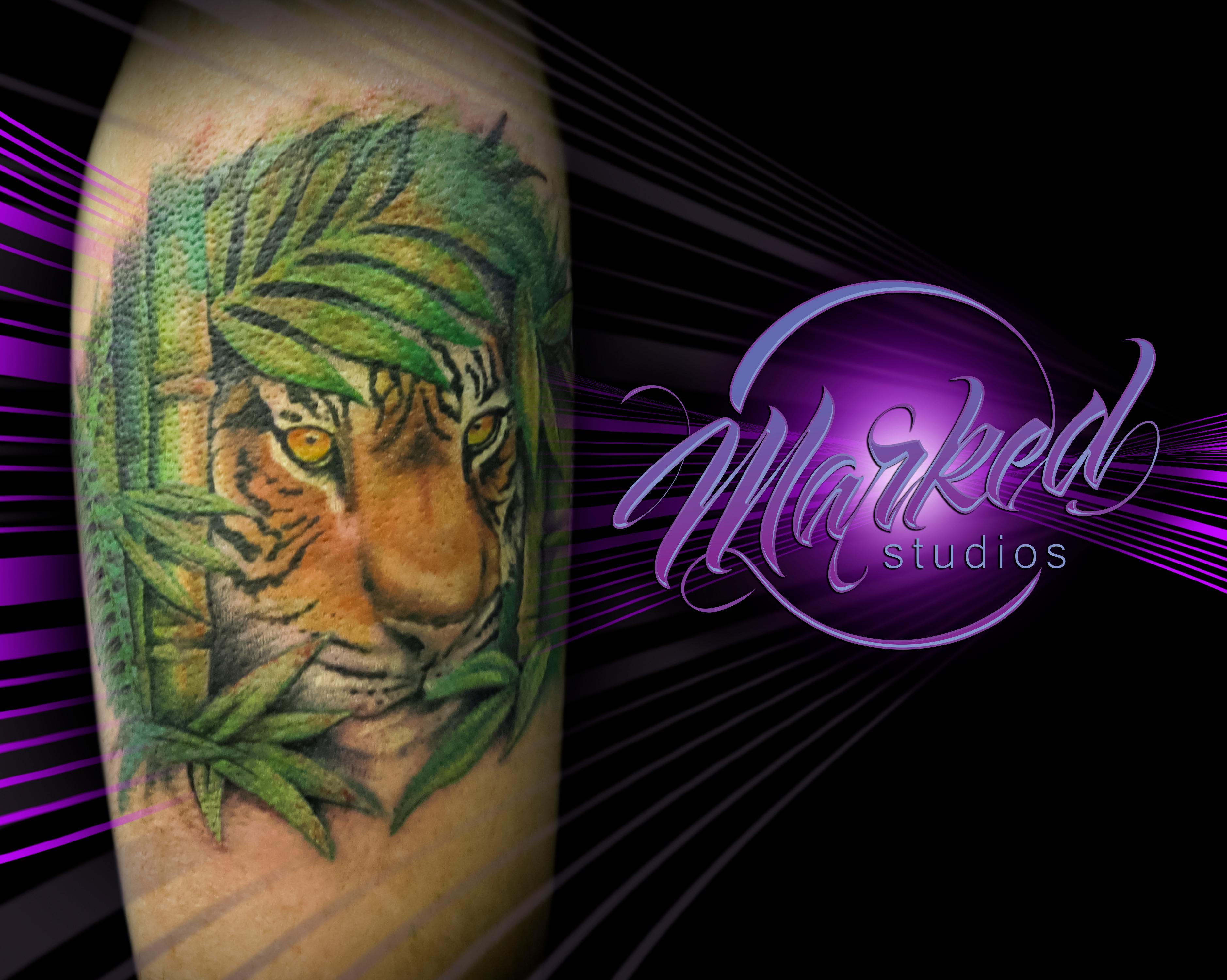 Marked Studios Inc image 3