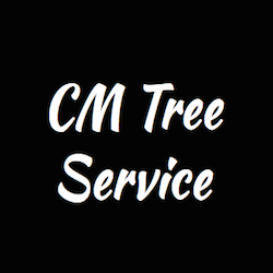 Tree Service in NY Babylon 11702 CM Tree Service 192 Ralph Avenue  (516)369-4323