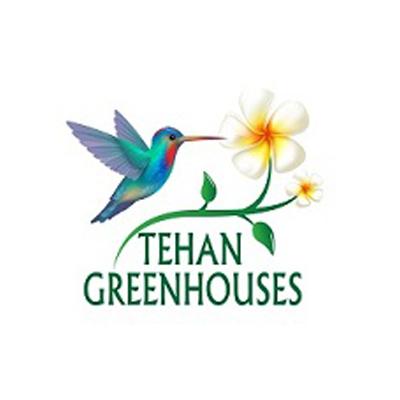 Tehan Greenhouses, Inc. image 0