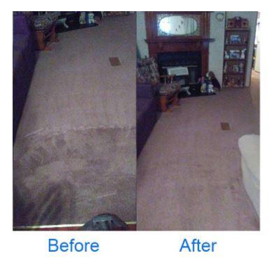 Deep Clean Carpet Clean image 2