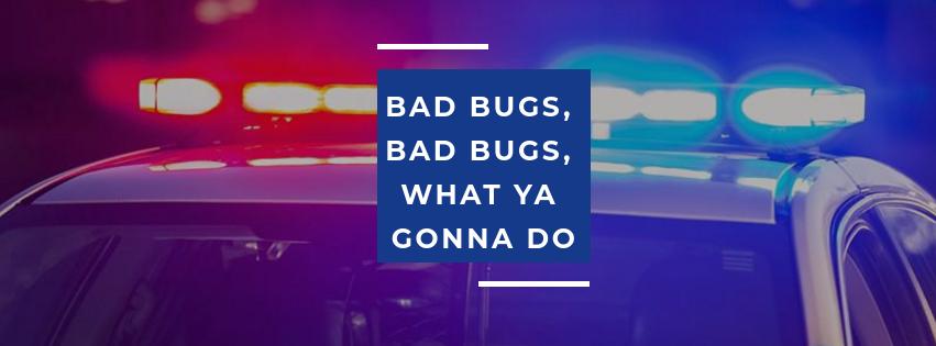 Bug Police image 1