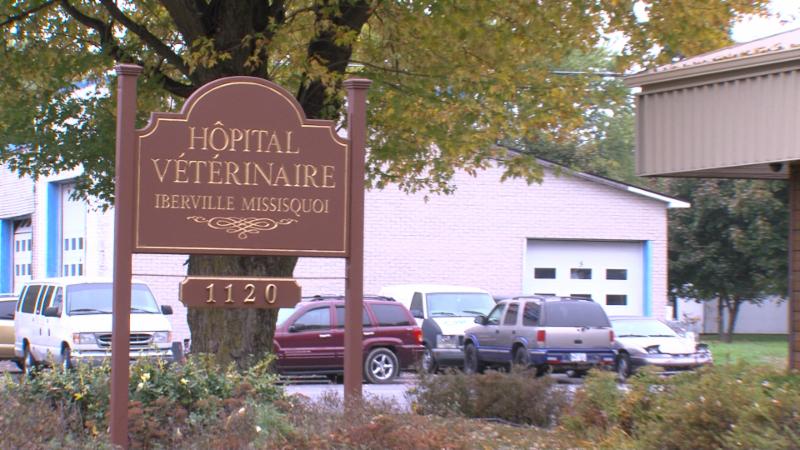 Hôpital Vétérinaire Iberville Missisquoi