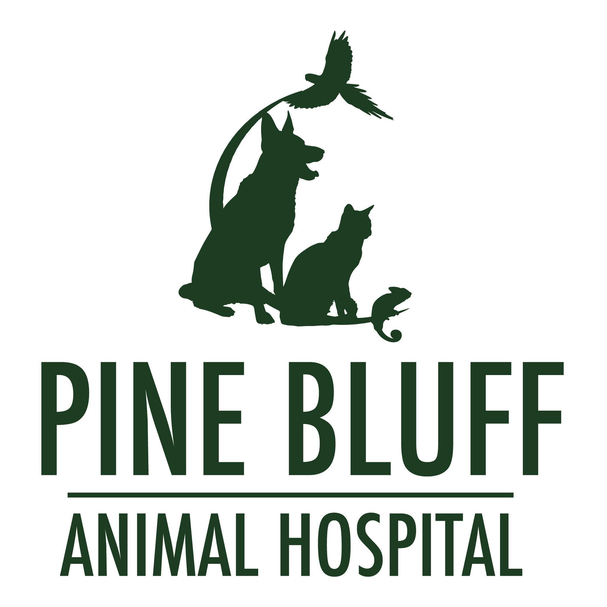 pine bluff animal hospital in morris il   815 942 5