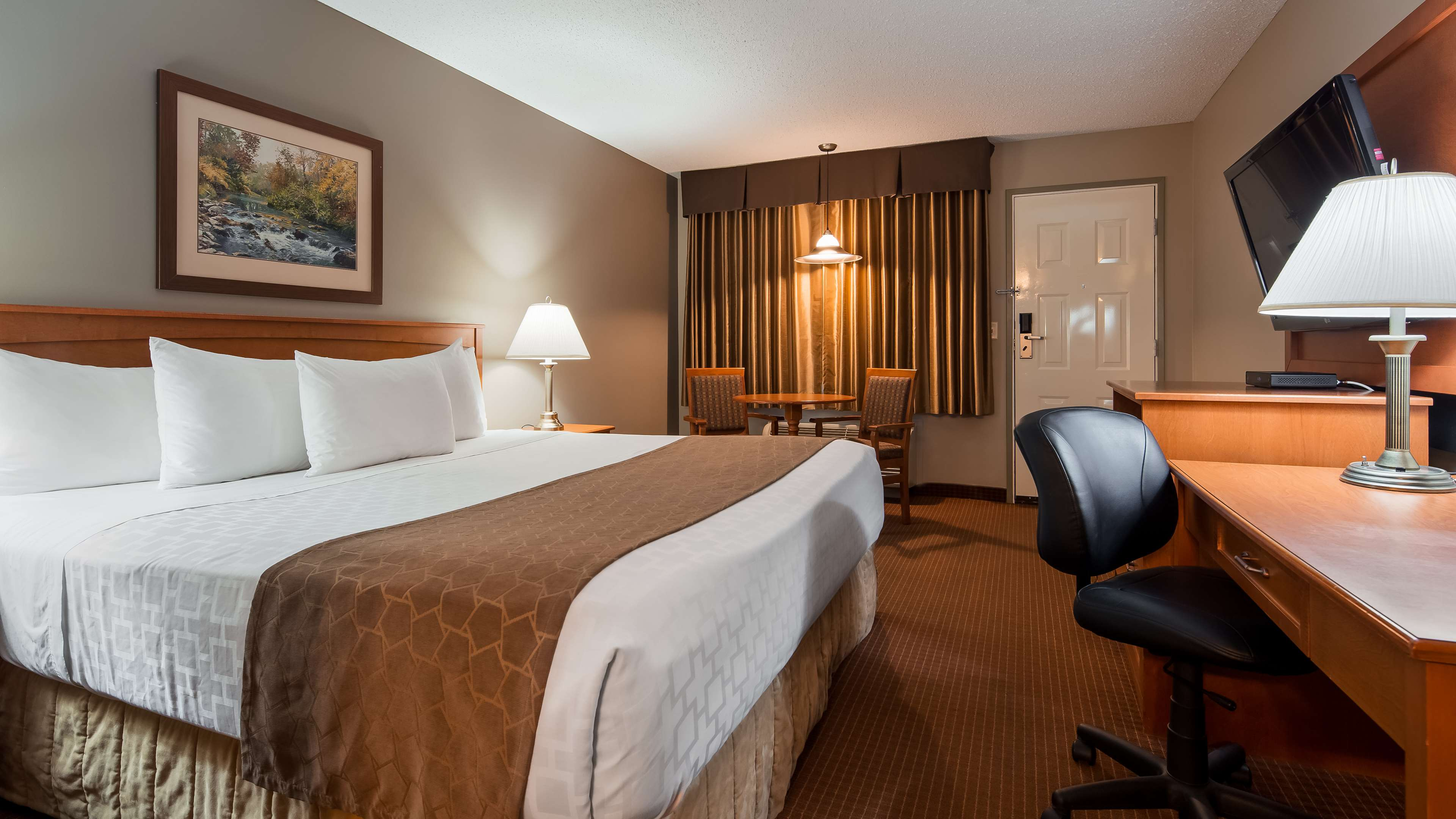 salmon arm chat rooms Whether your visit brings you for business or pleasure, we are ready to welcome you at the comfort inn & suites salmon arm.