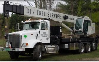 D J's Tree Service & Logging image 1