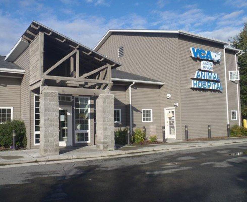 VCA Eagle River Animal Hospital image 5