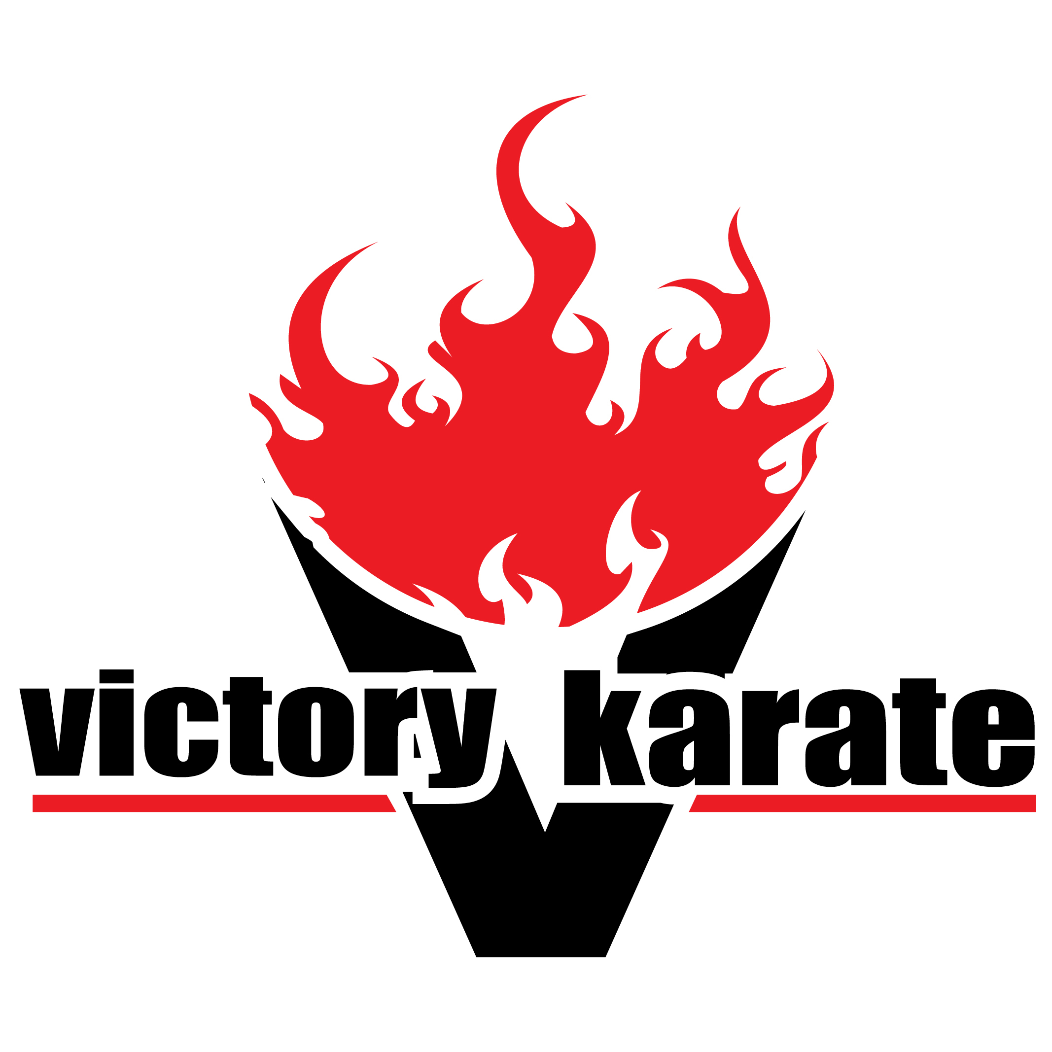 Victory Karate and Afterschool Program