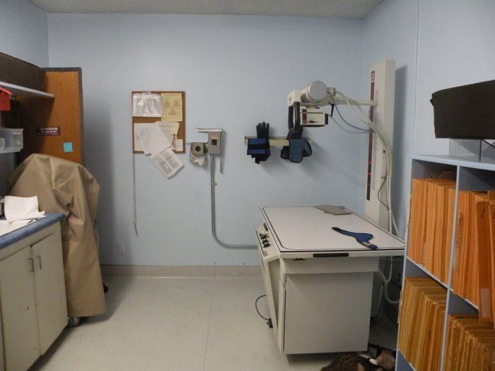VCA College Park - Ana Brook Animal Hospital image 1