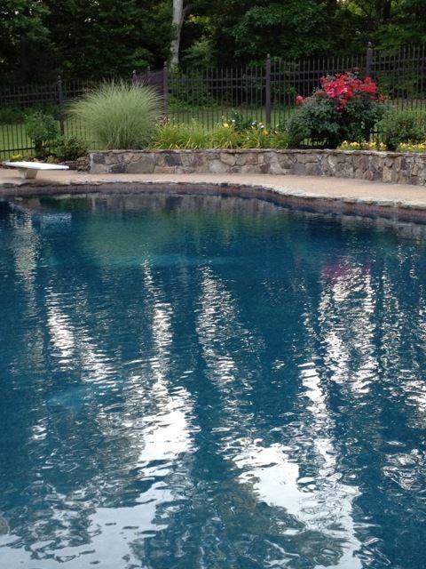 Sparkle Clean Pools image 0