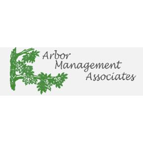 Arbor Management Associates INC