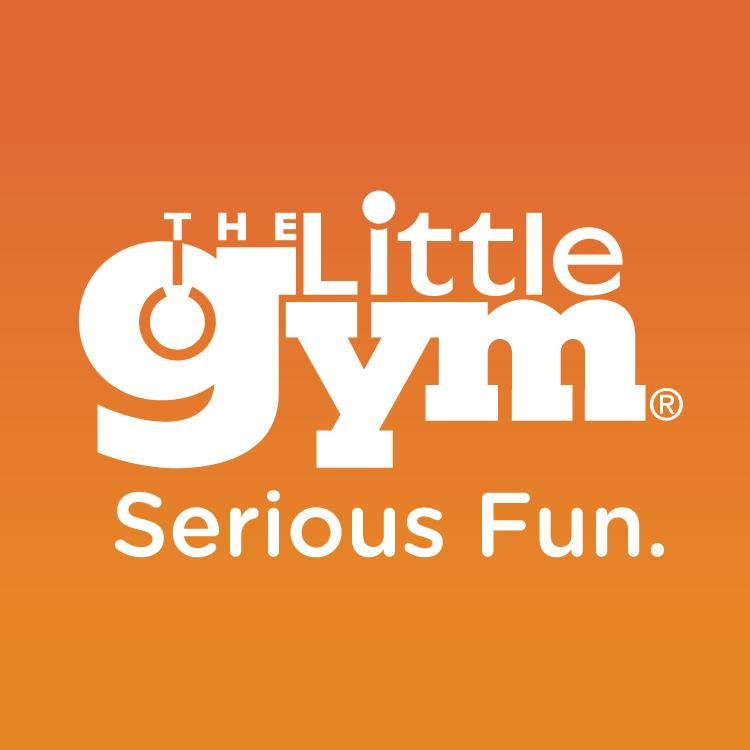 The Little Gym of Dulles Landing image 4