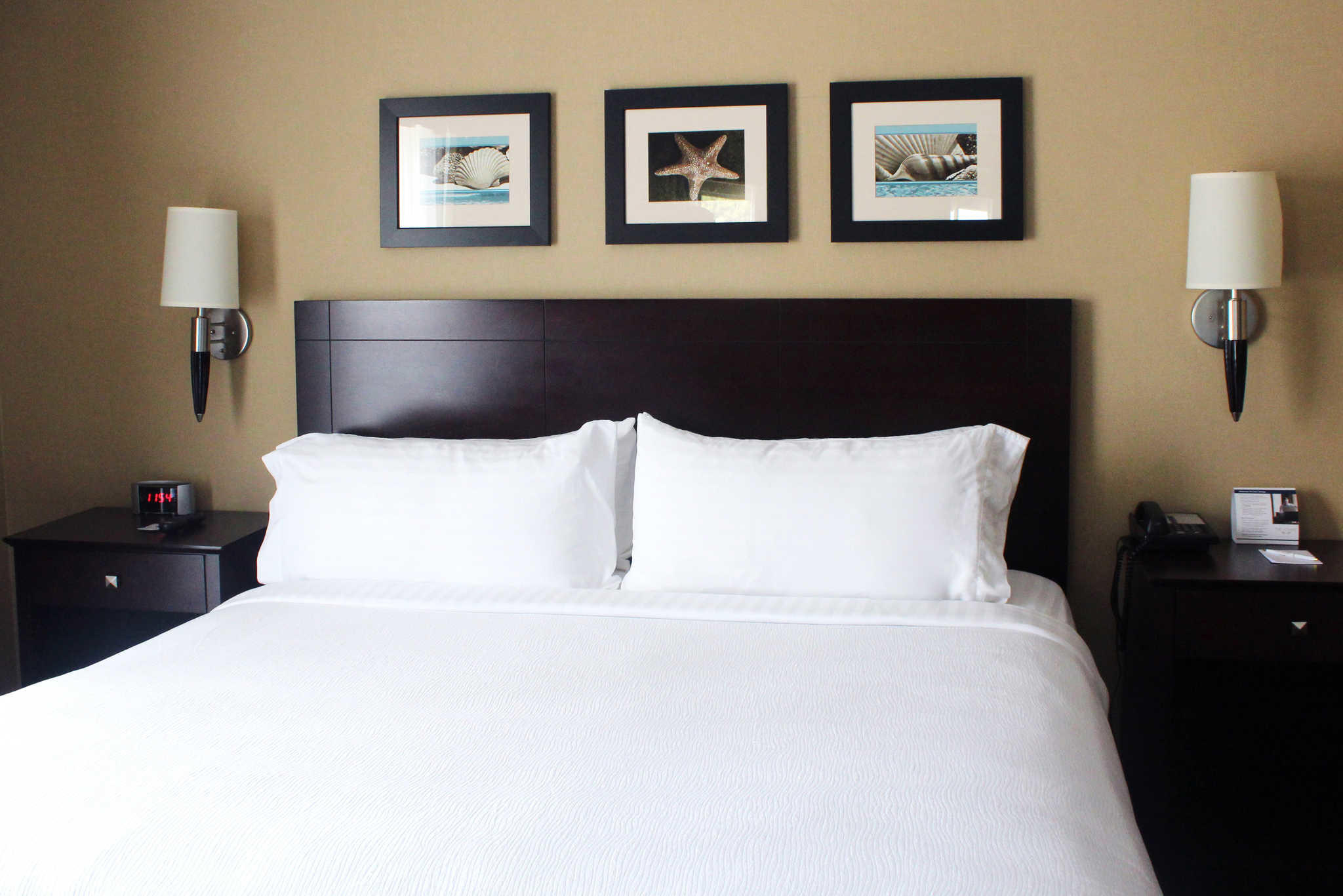 The Volare, an Ascend Hotel Collection Member image 12