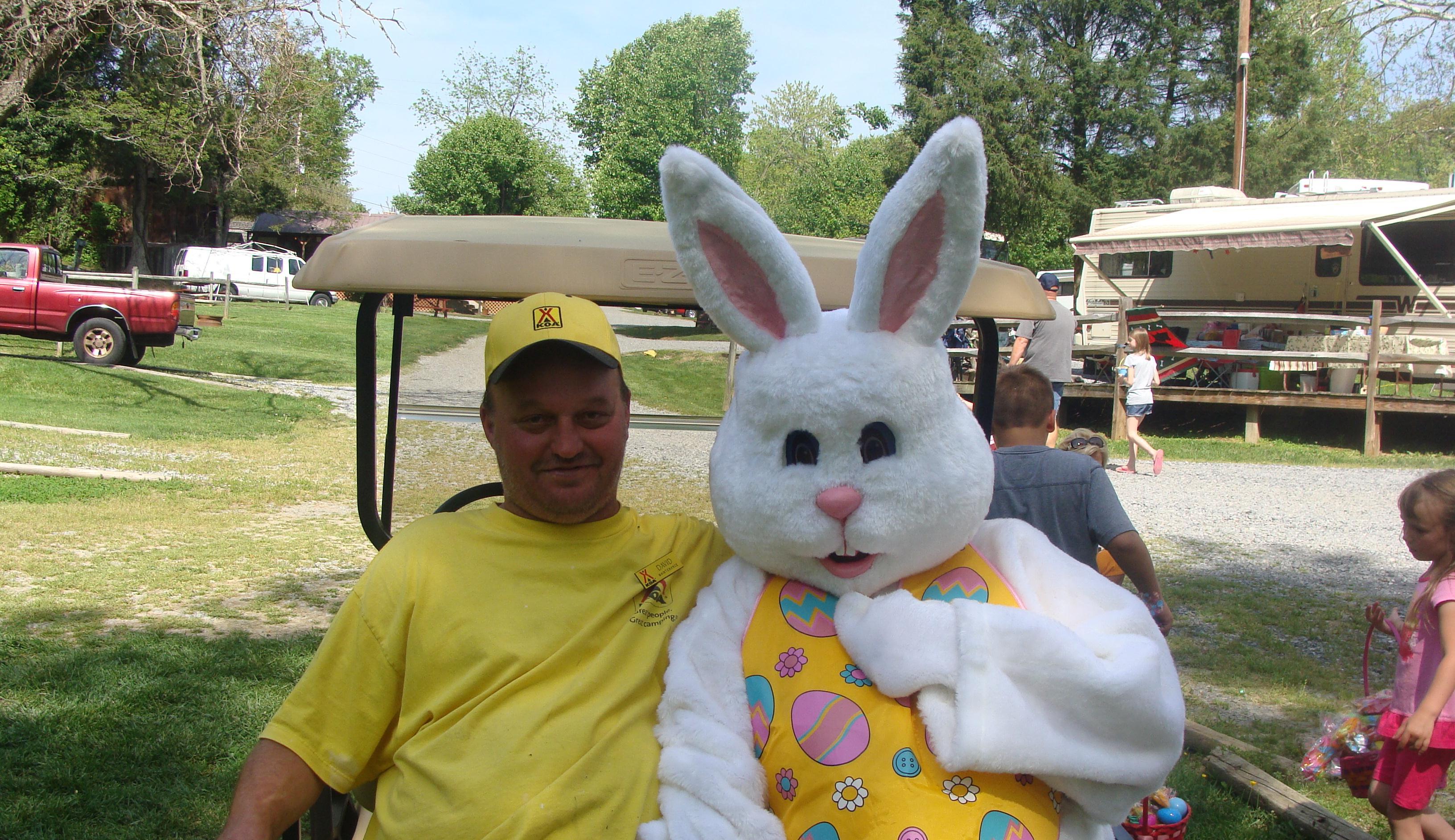 Bristol / Kingsport KOA Holiday in Blountville, TN, photo #25