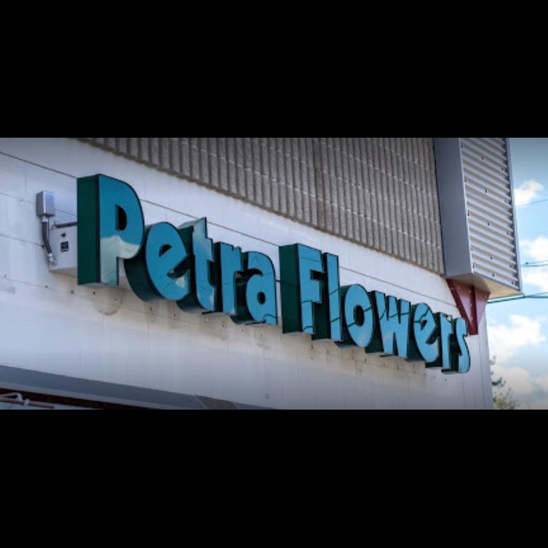 Petra Flowers image 6