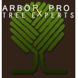 Image 1 | Arbor-Pro Tree Experts