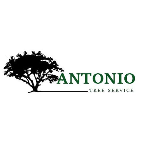 Antonio Tree Service