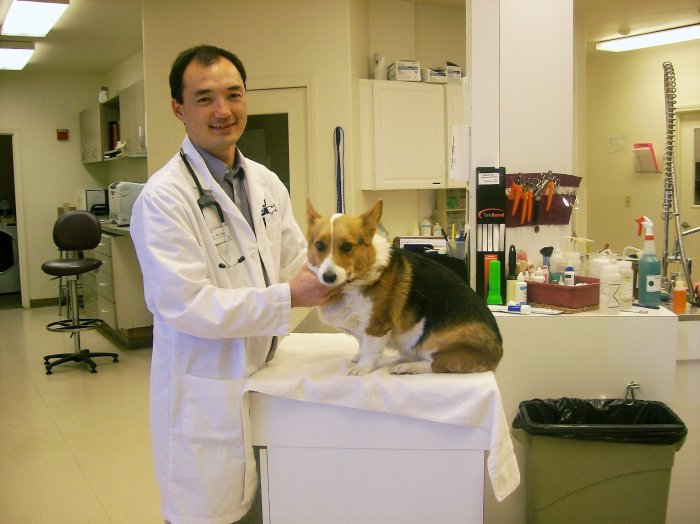 VCA Victor Valley Animal Hospital - ad image