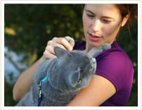 VCA Pets Are People Too Roswell Animal Hospital image 0