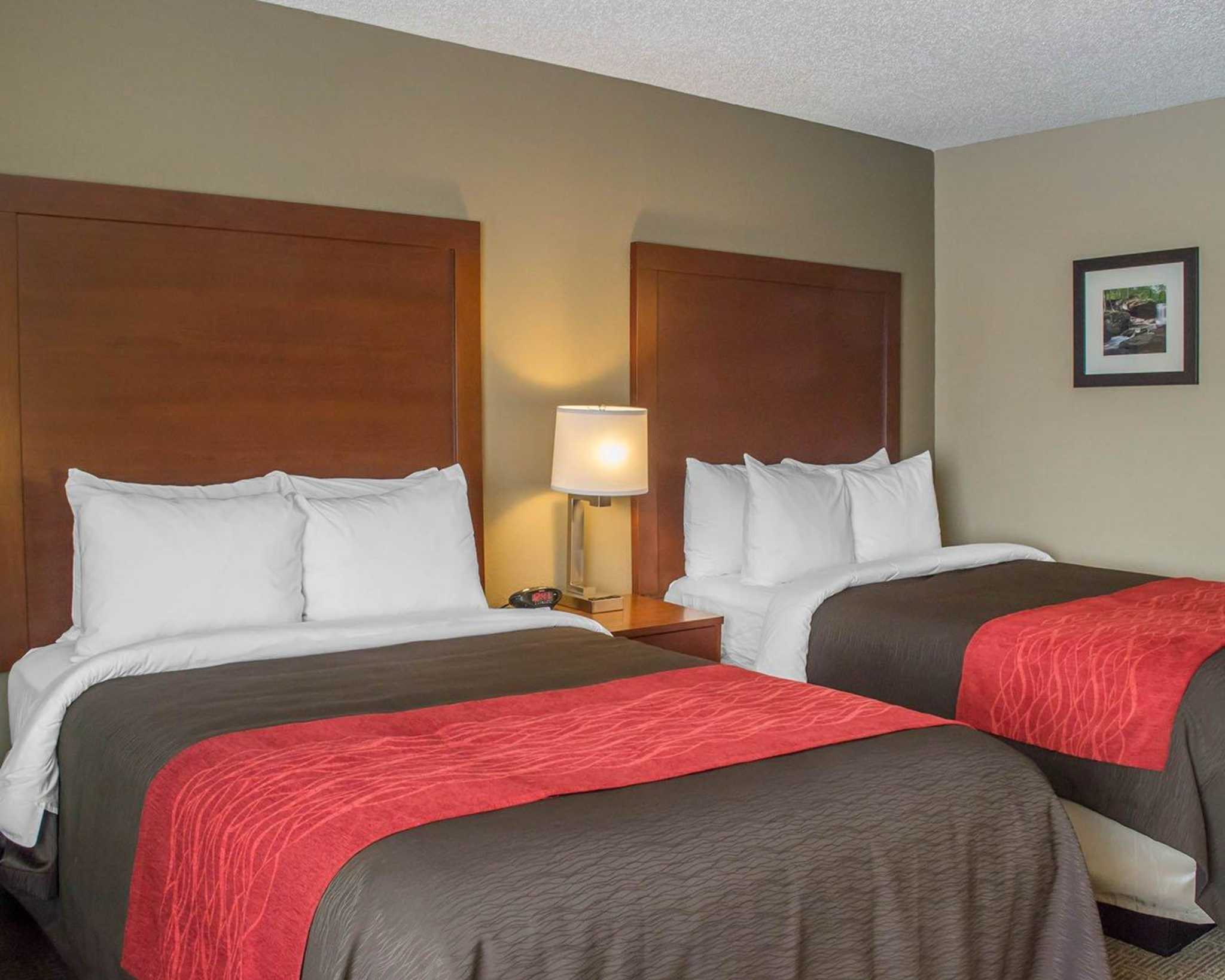 Comfort Inn Mayfield Heights Cleveland East image 3