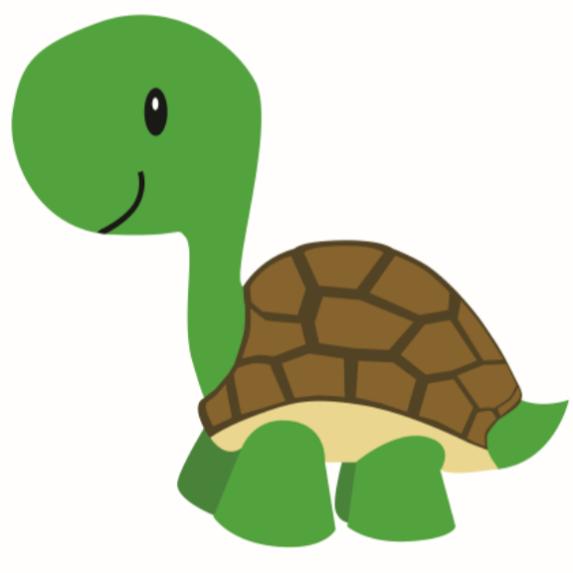 Turtle Tots Academy