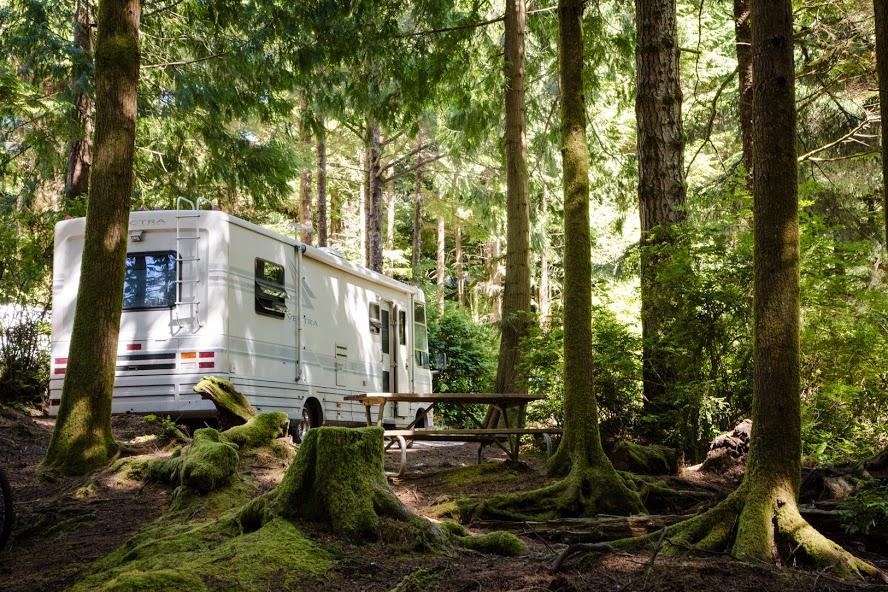 South Jetty RV & Camping Resort image 3