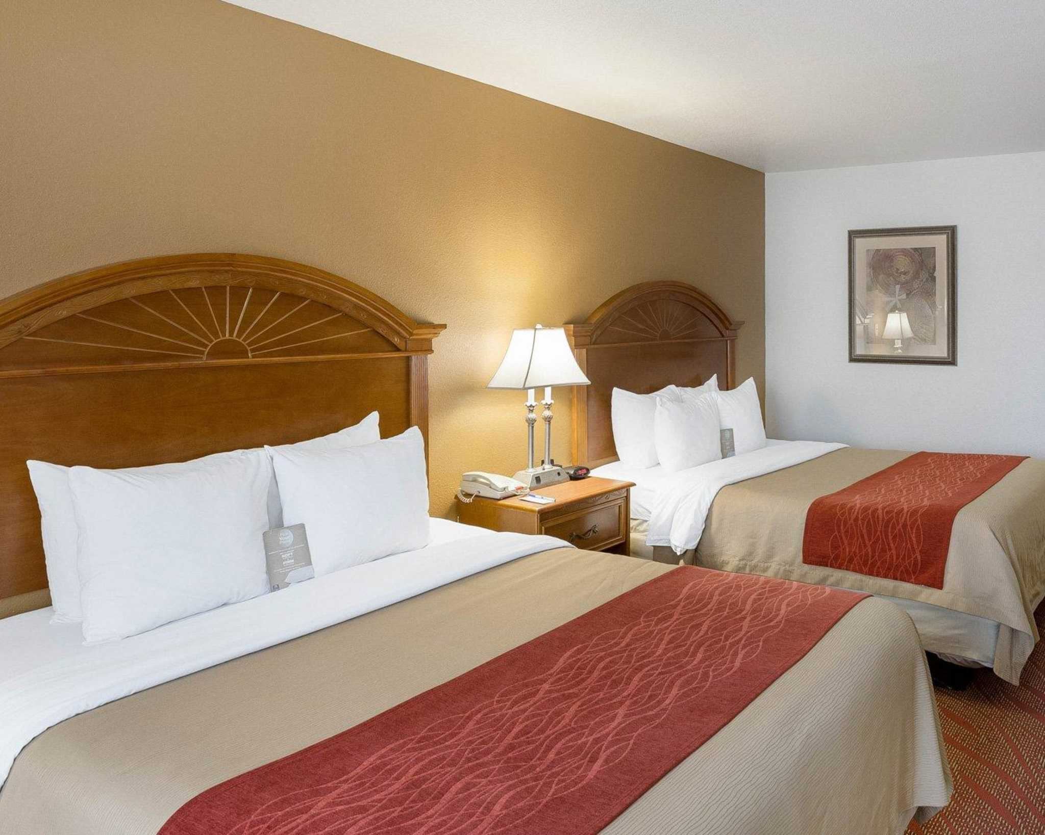 Comfort Inn Amp Suites Near Medical Center At 6039 Ih 10