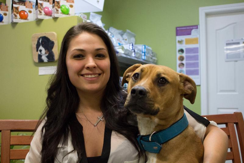 Clinique Vétérinaire de Luceville à Sainte-Luce