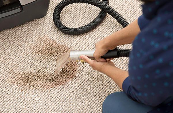 Earth Friendly Carpet Care image 2