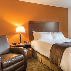 My Place Hotels image 3