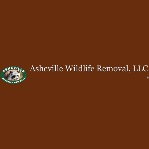 Asheville Wildlife Removal, LLC