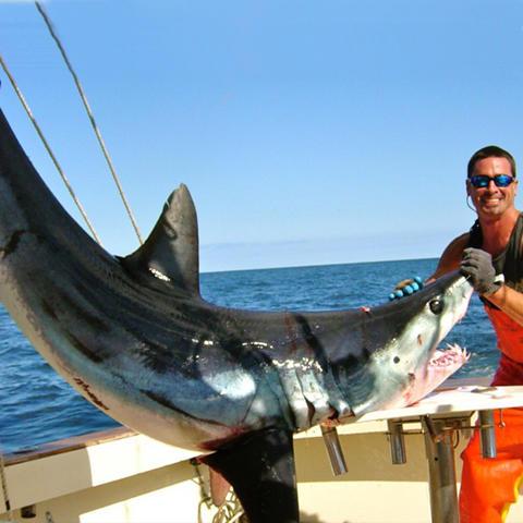 Captain Art's Fishing Charters image 23