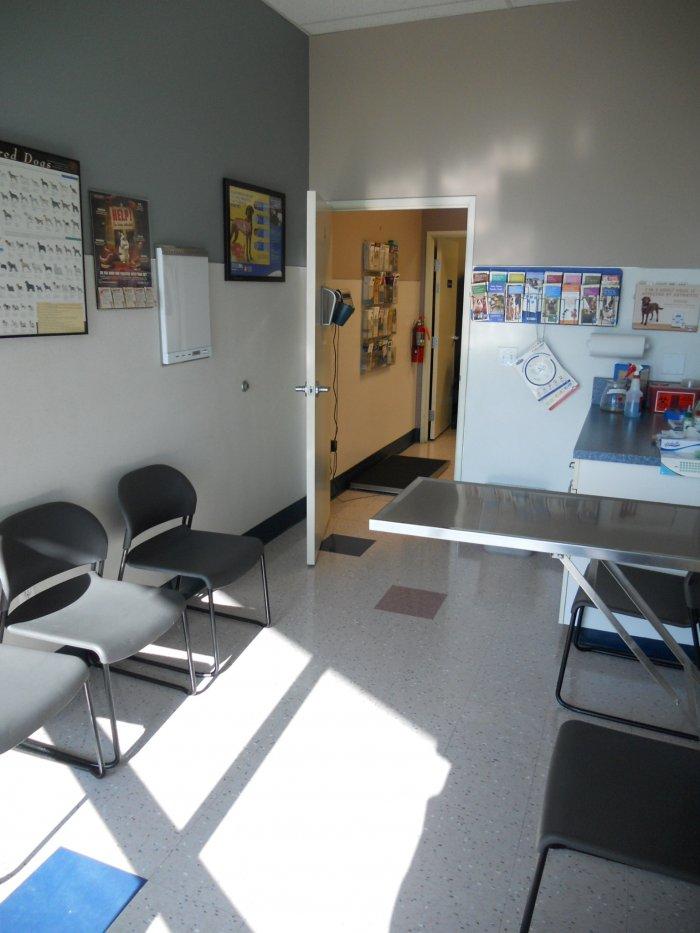 VCA Clackamas Animal Hospital image 4