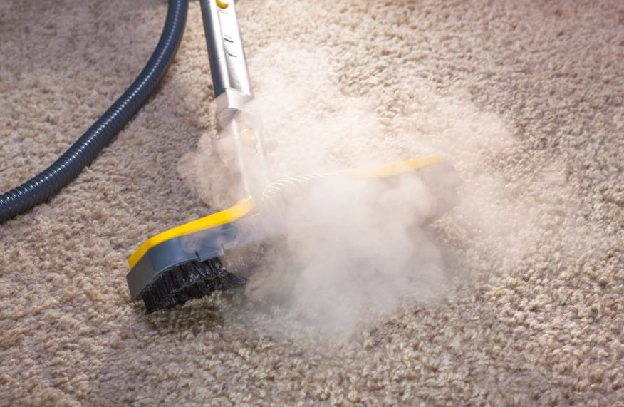 Ray's Carpet Care & Restoration Services image 1