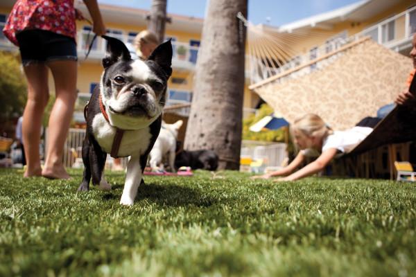 Hotel Del Sol image 1