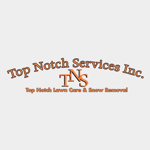 Top Notch Services image 0