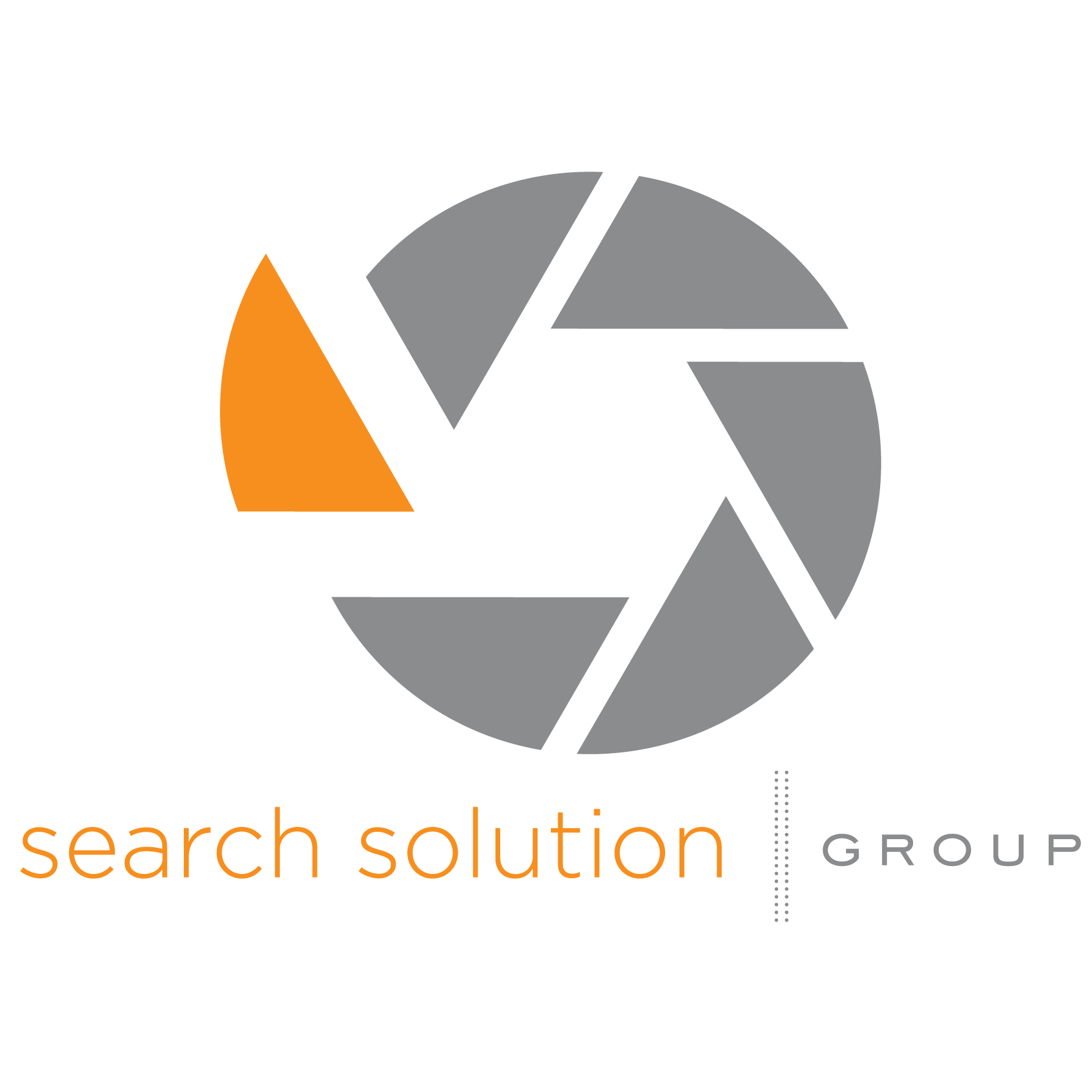 Search Solution Group image 4
