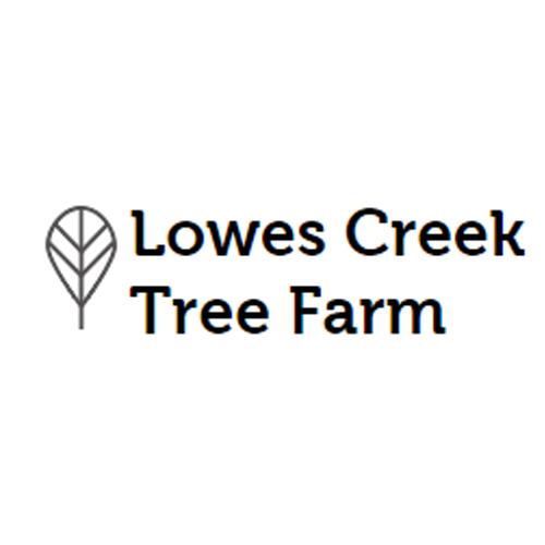 Lowes Creek Tree Farm image 0