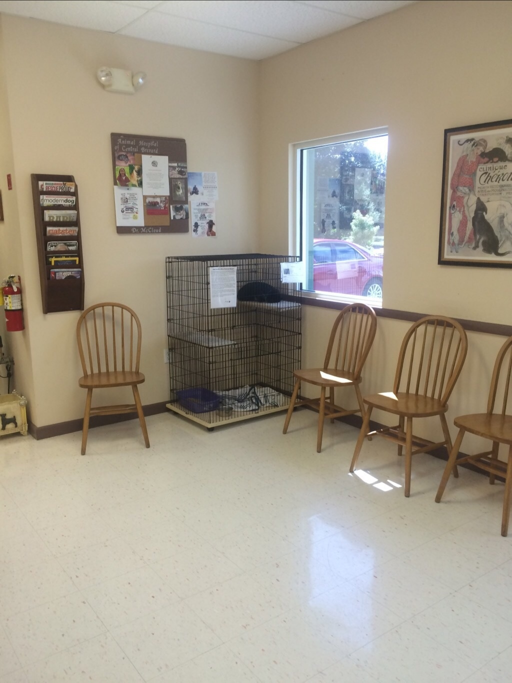 Animal Hospital of Central Brevard image 3