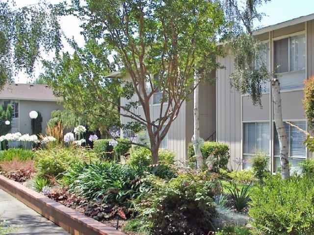 Bella Vista Apartment Homes image 2