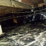 Water B Gone Basement Waterproofing / Safie Bros. Construction