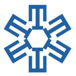 Tamaroff Nissan