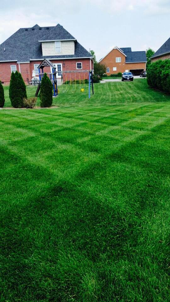 Primm's Landscaping LLC. image 3