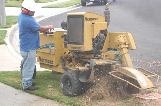 A-1 Stump Grinding image 0