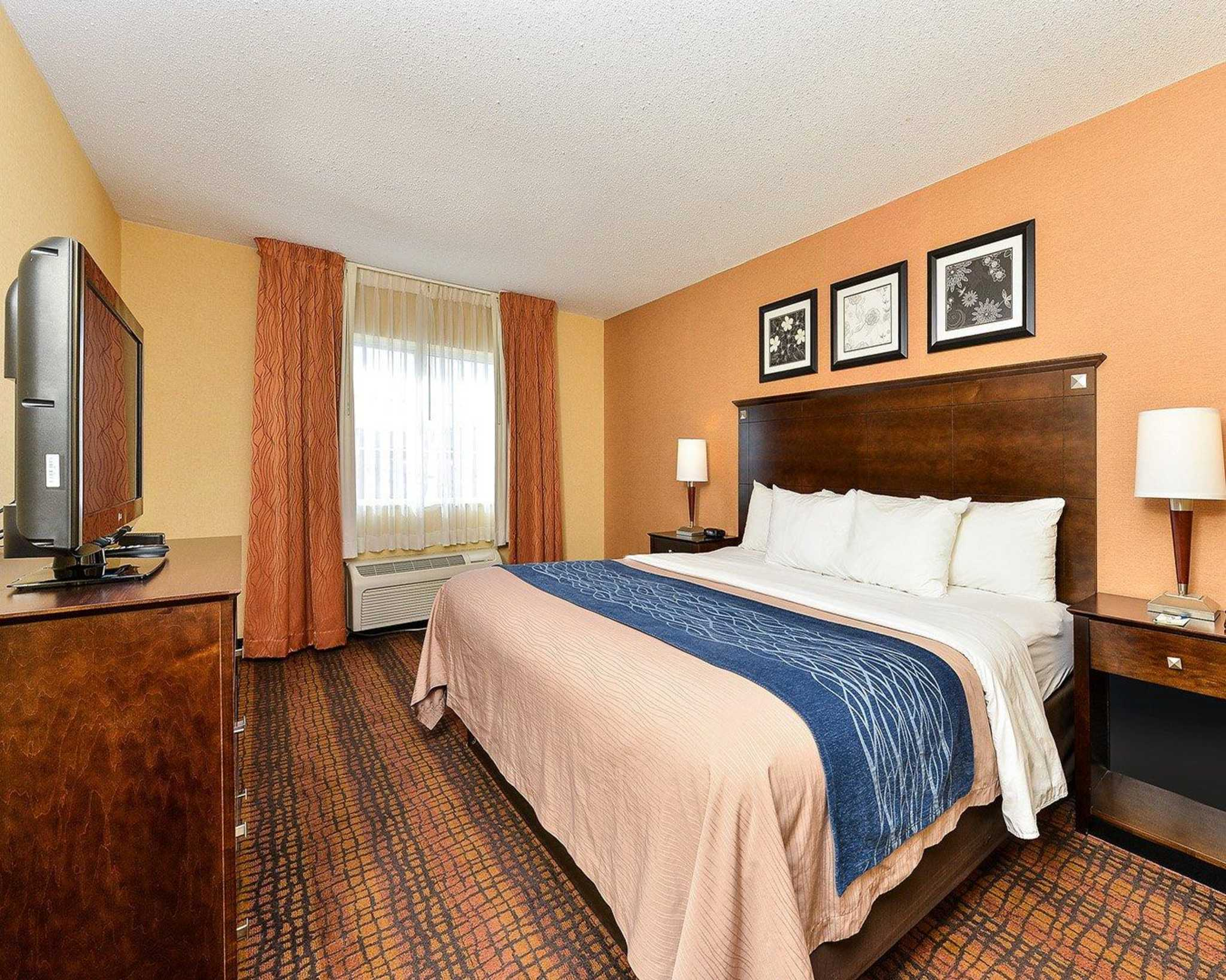 Quality Suites image 5