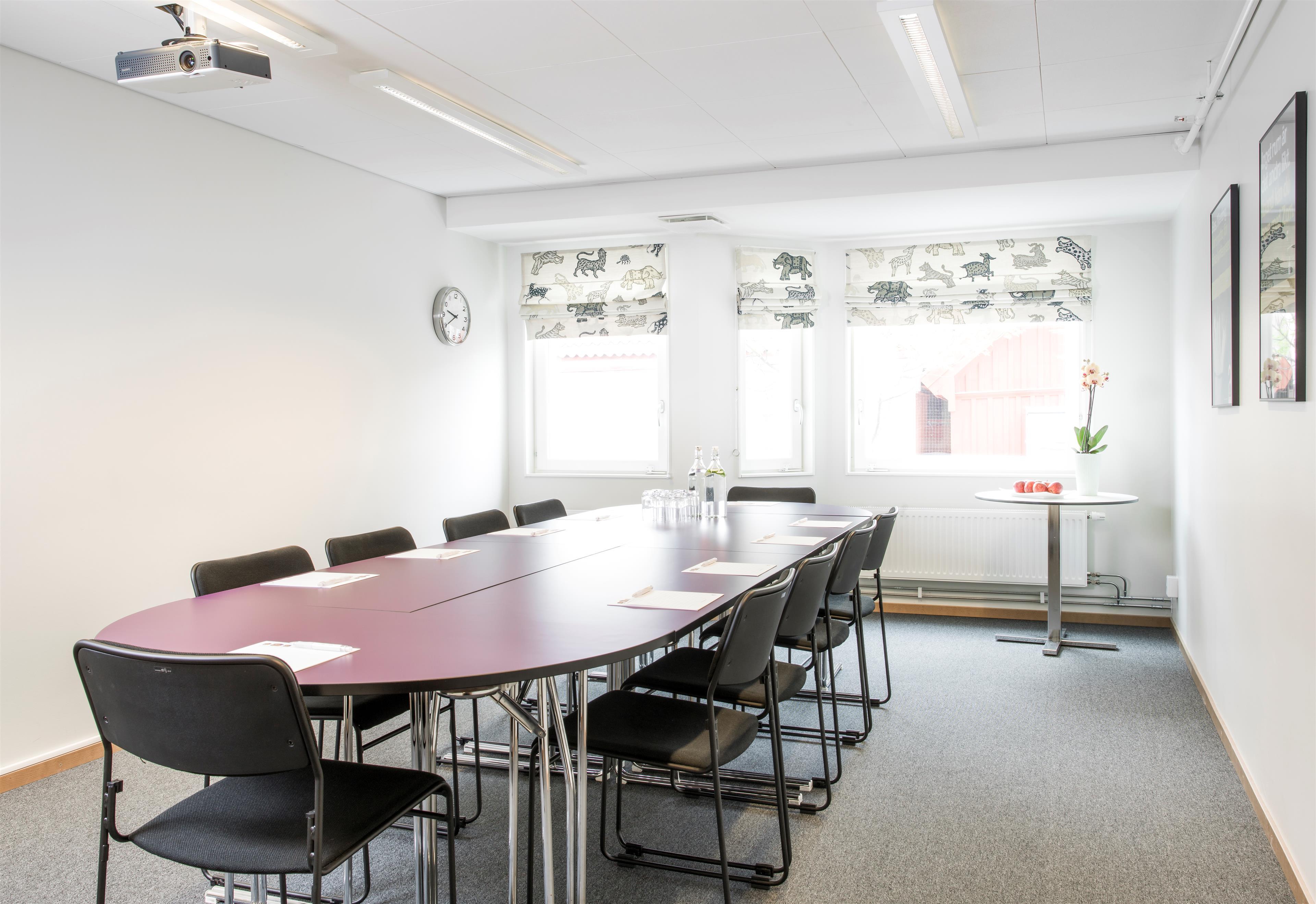 Gullhår Meeting Room