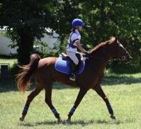 Salem Equestrian Center image 6