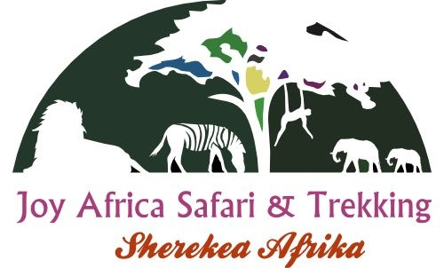 Joy Africa Safari