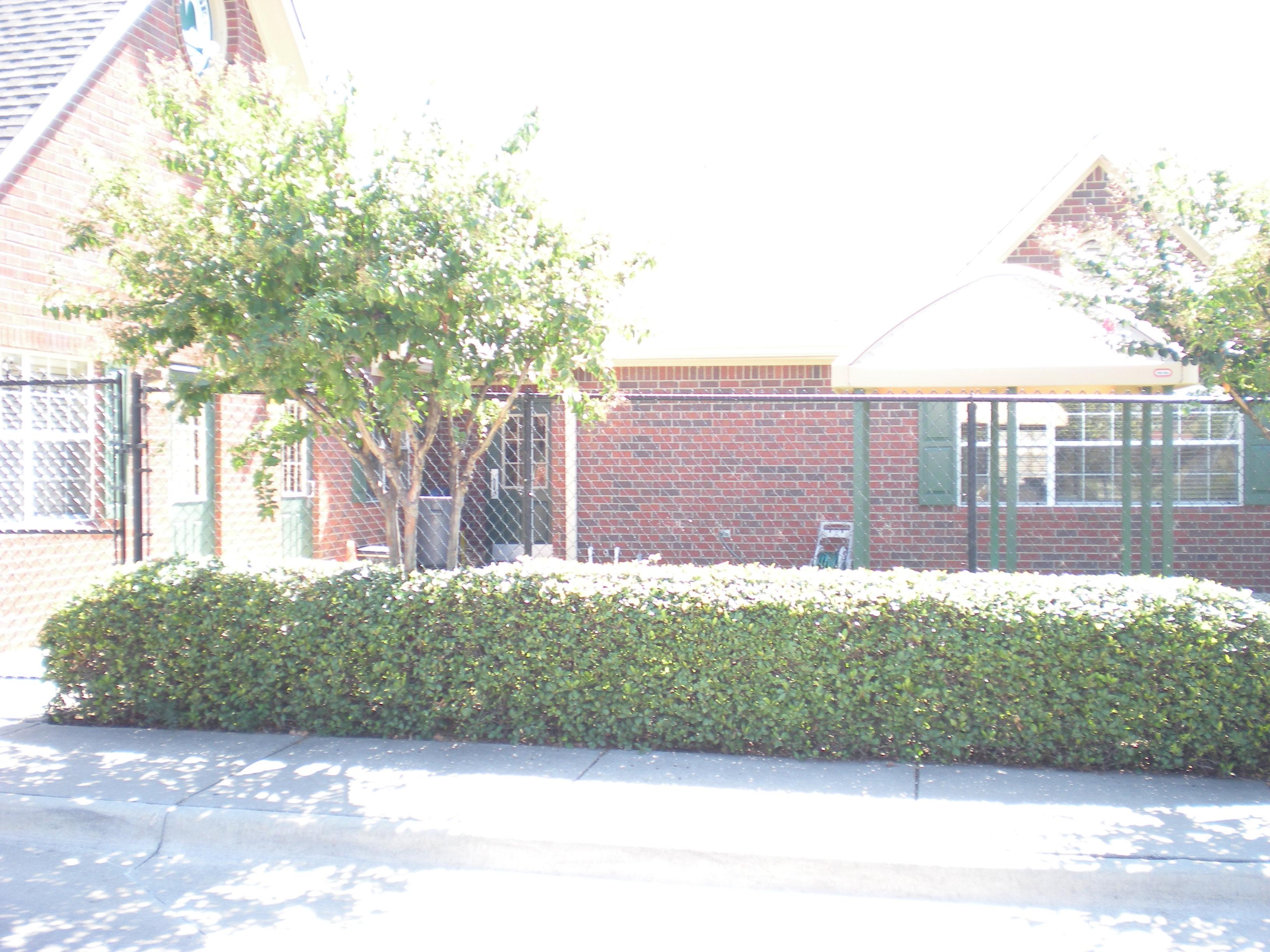 Primrose School of North Lewisville image 6