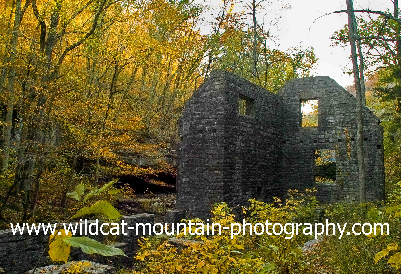 Wildcat Mountain Photography image 0
